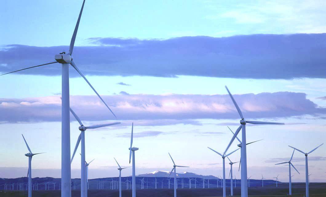 Wind power blown away at the ballot box
