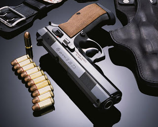 Poll: Michigan strongly supports 'red flag' gun law