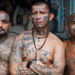 Lefty liberals inadvertently blast Trump's 'animals' label for immigrant MS-13 gang members