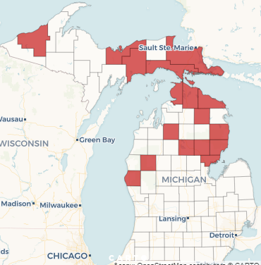 Michigan Medicaid work requirements gain national attention due to racial issues